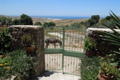 Holiday home near Asilah - Khanfous Retreat, Asilah, Morocco (3)